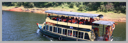 Periyar Wildlife Sanctuary, Thekkady Wildlife, Thekkady Elephant Wildlife, Thekkady Tourism
