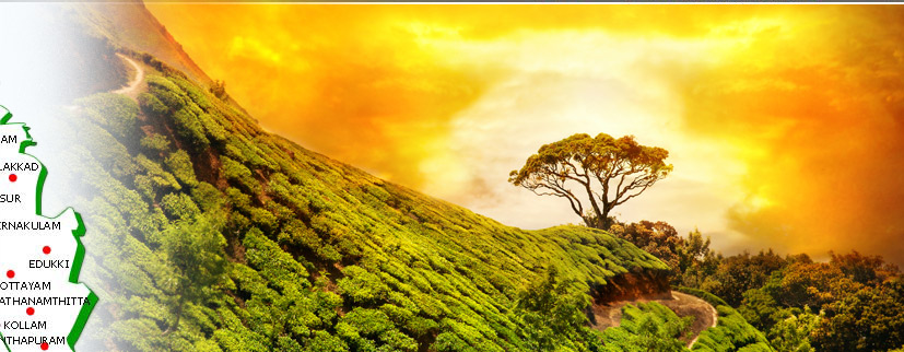 Munnar Travel in Kerala